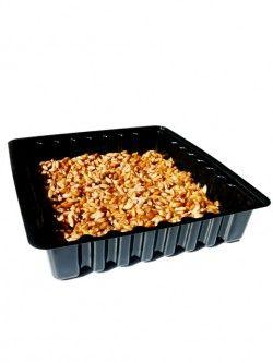 Spreid een egale laag zaden (geweekt!) over de bodem van het kweekbakje.