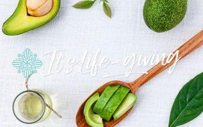 Avocado – een rijke bron van voedingsstoffen!